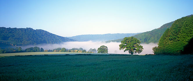 Mist, Clearwell