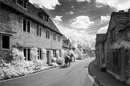 Horses, Castle Combe