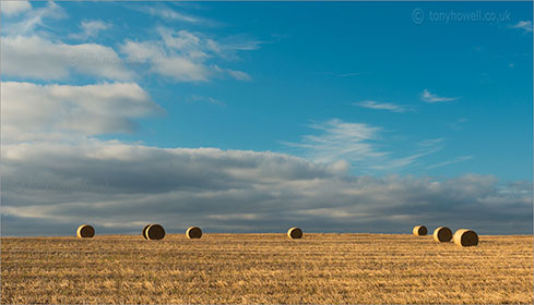Hay Bales near North Curry