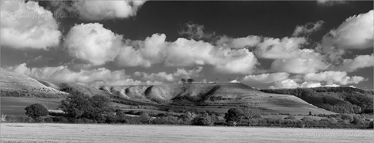 Roundway Hill, Devizes, Wiltshire