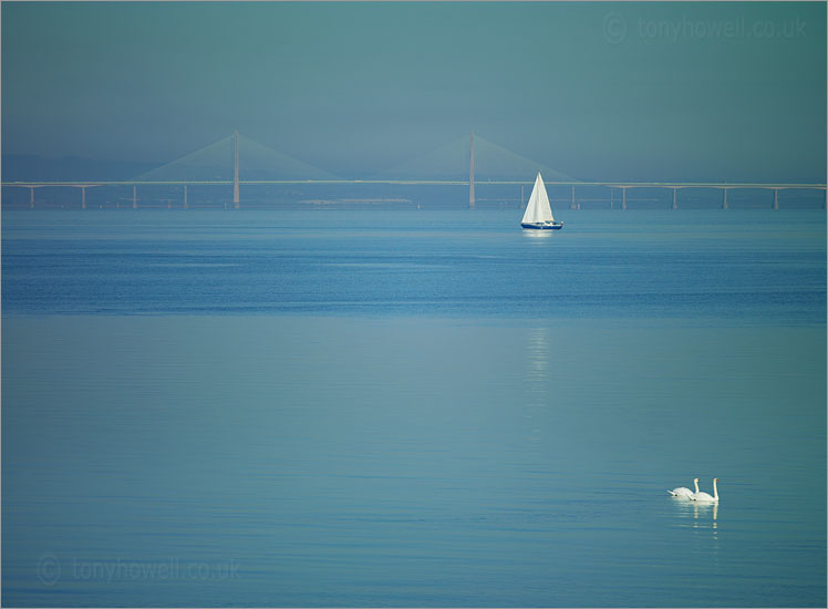 Second Severn Crossing, Yacht, Swans
