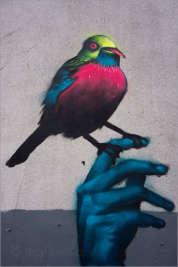Street Art, Graffiti