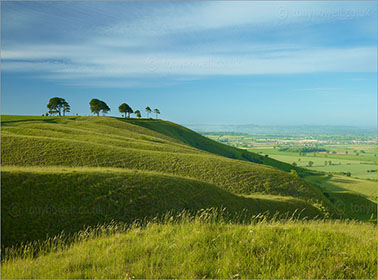 Roundway Hill, Devizes