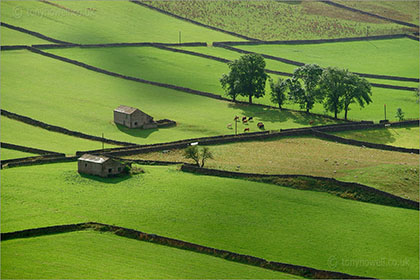 Walls and Barns, Kettlewell