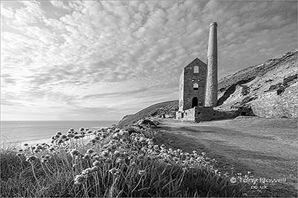 Wheal-Coates-Thrift-Cornwall