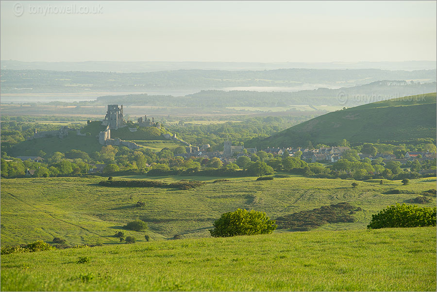 Corfe Castle, Dawn