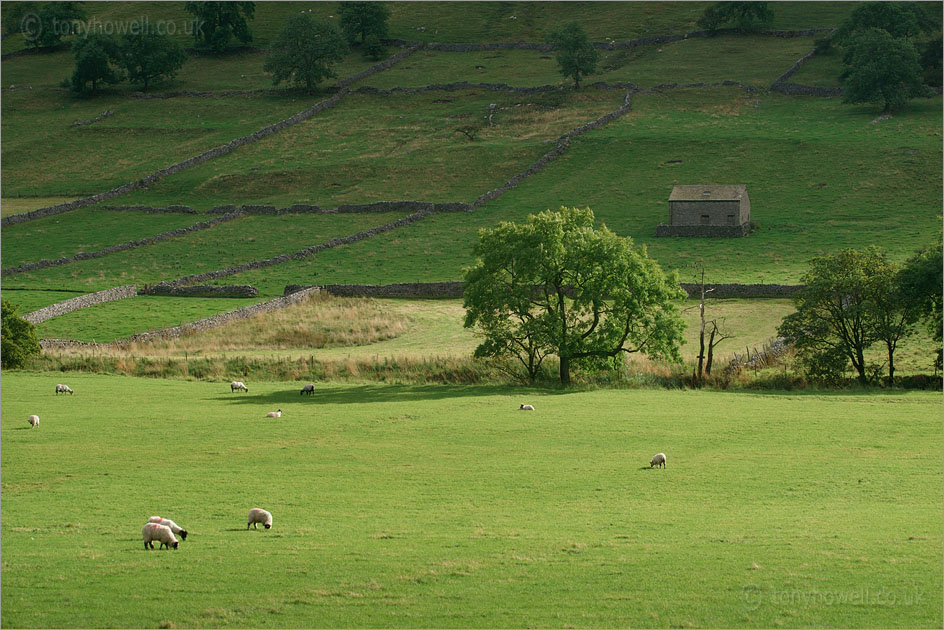 Walls and Barn, Kettlewell