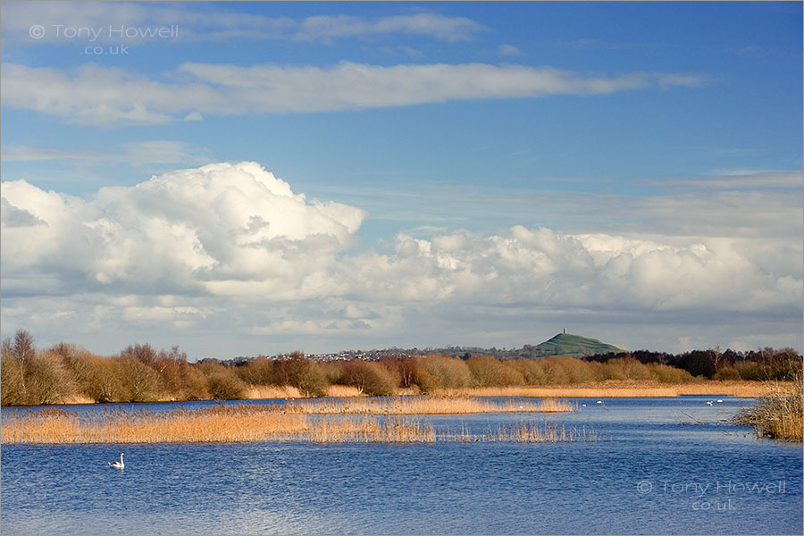 Shapwick Heath and Glastonbury Tor