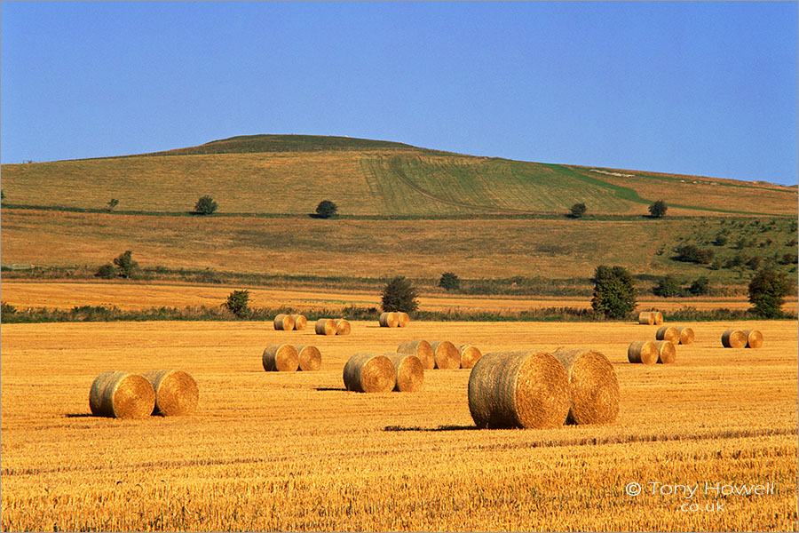 Hay Bales, Vale of Pewsey