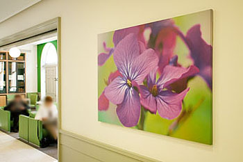 London Clinic canvas